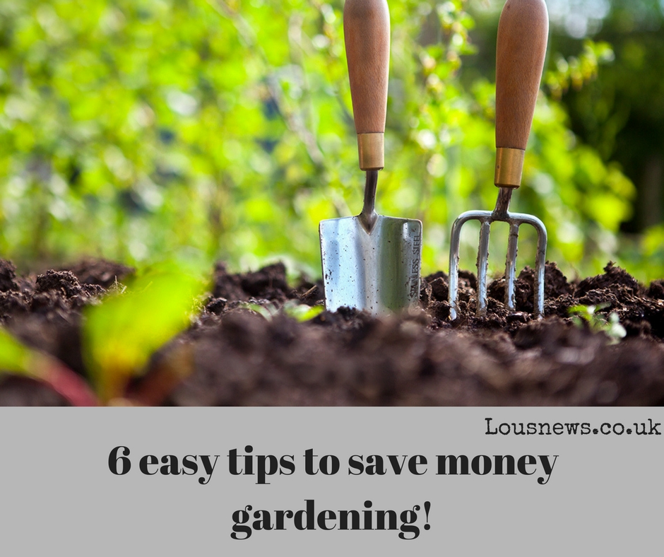 6 easy tips to save money gardening!